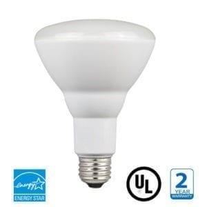 LED BR40 Bulb