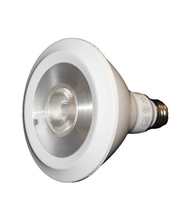 PAR30-LED-Bulb